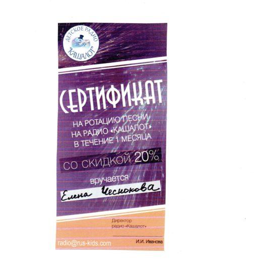диплом Чеснокова165